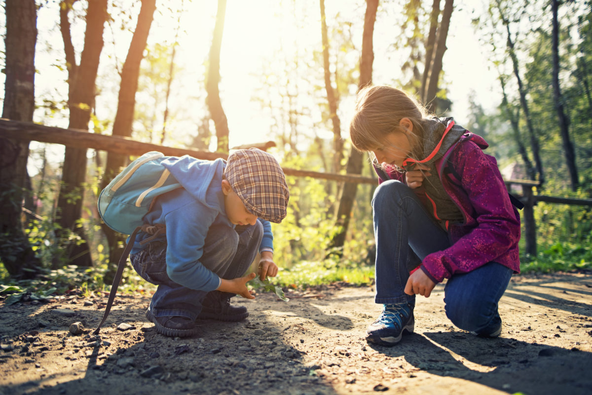 Treffpunkt Vielfalt (im) Wald: Gemeinsam draußen