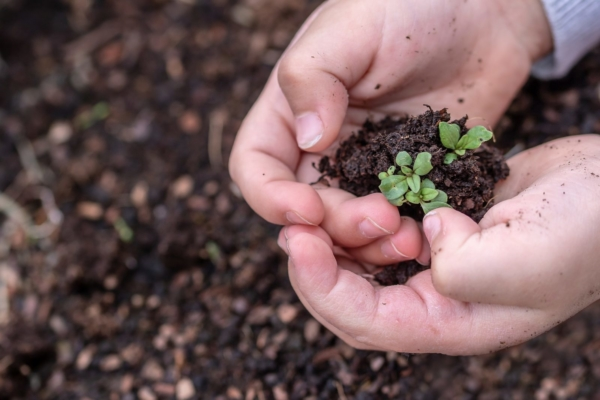 Bild zu Sieben Grundbedürfnisse für ein gutes Aufwachsen (Teil 1)