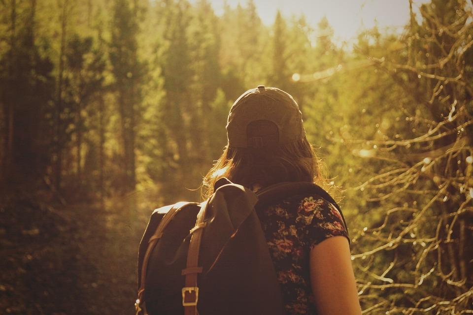 WaldBaden: WALDzeit- AusZEIT für Frauen